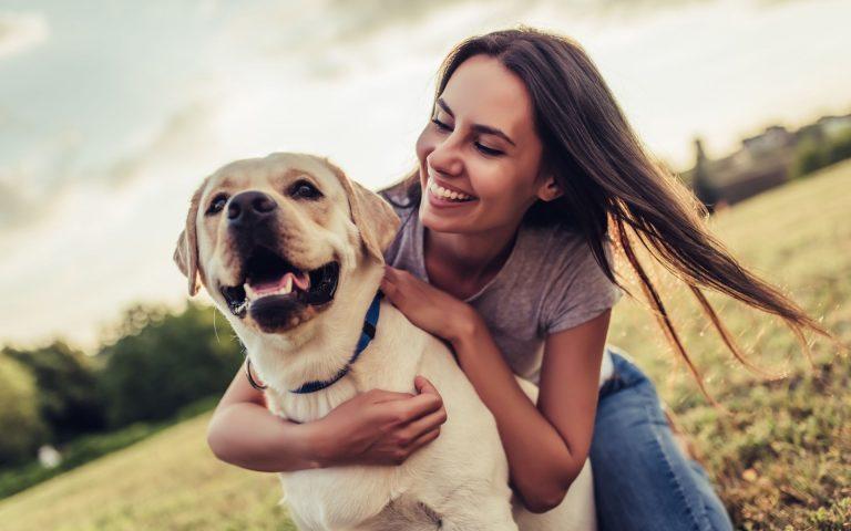 gave til hundeeier hundeelsker